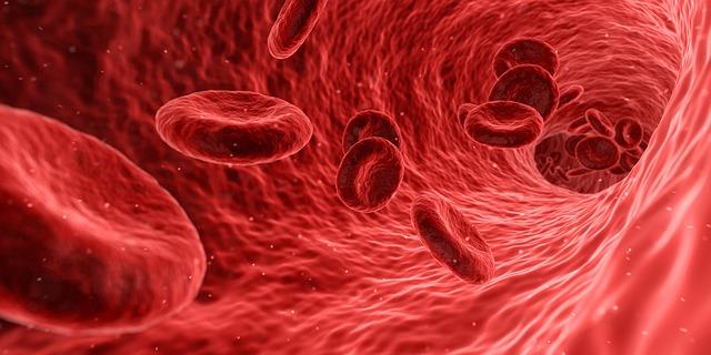 blood-1813410_640.jpg